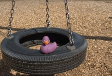 Amethyst on A Tire Swing