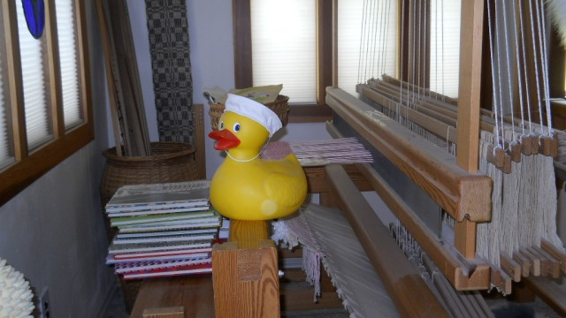 Sailor Duck on A Loom
